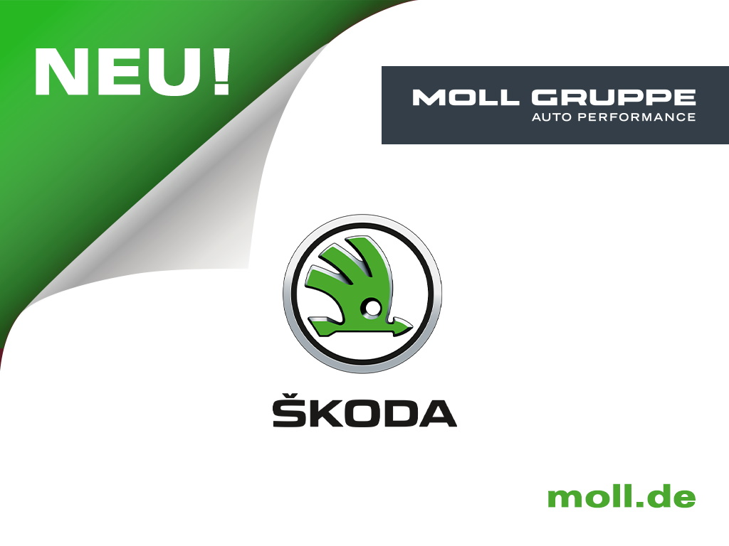 Skoda Octavia Combi 1.6 TSI Style Navi Teilleder, Jahr 2017, Diesel