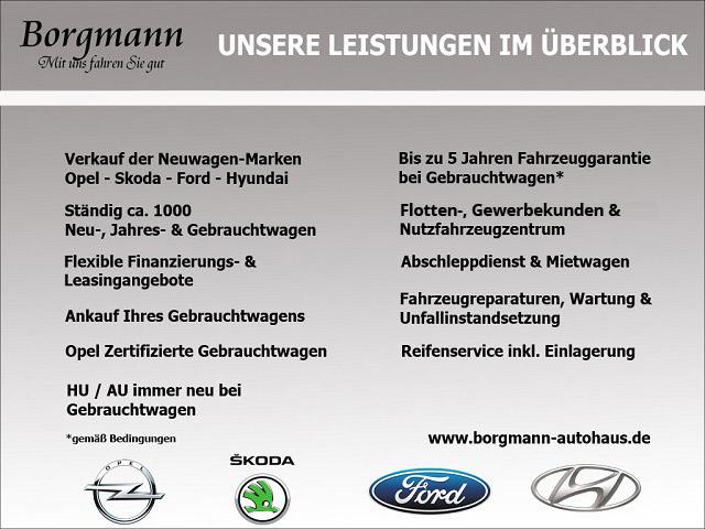 Ford Fiesta Champions Edition 1.25, Jahr 2012, petrol
