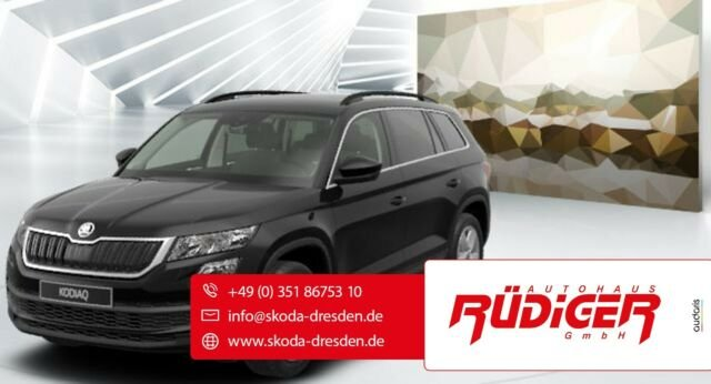 Skoda KAROQ Ambition 2,0l TDI 4x4110 kW, 6-Gang-Schalt, Jahr 2020, Diesel
