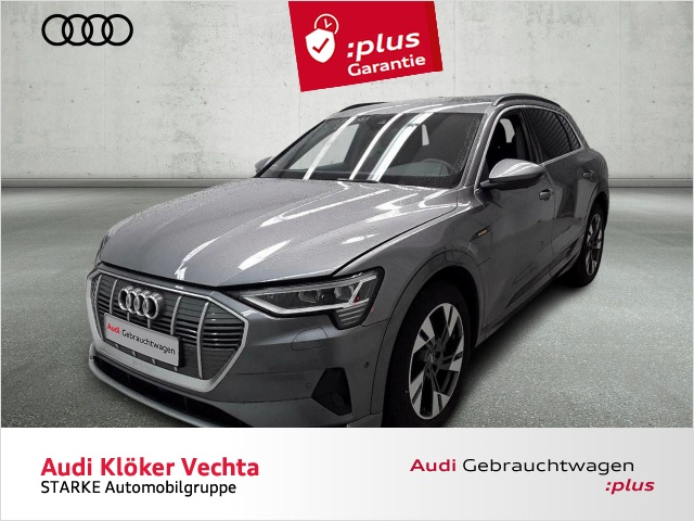 Audi e-tron 55 quattro advanced Navi LED Leder Kamera P, Jahr 2019, Elektro