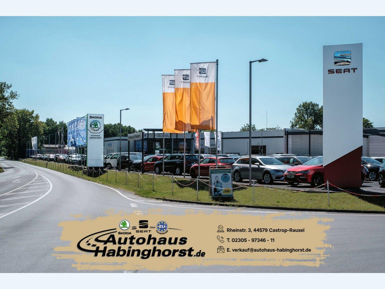 Ford EcoSport 1.0 EcoBoost Navi Sitzhzg Tempo 17Alu, Jahr 2016, Benzin