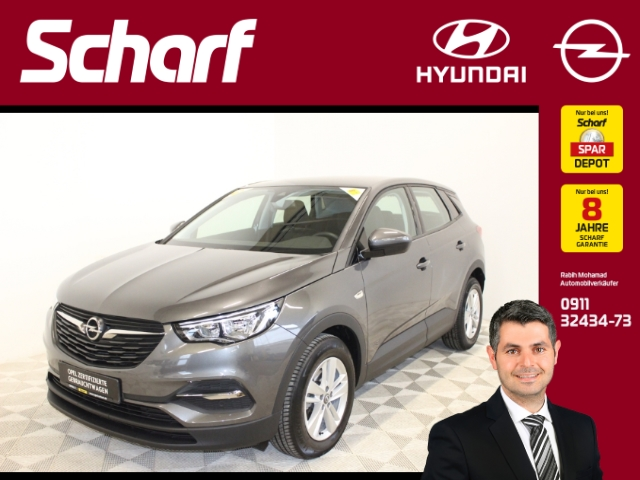 Opel Grandland X Edition KLIMA INTELLI SHZ BC PDC CAM, Jahr 2018, Benzin