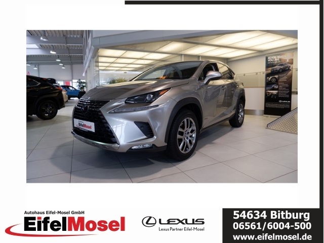 Lexus NX 300h *Executive* E-Four - Navi - Panoramdach, Jahr 2019, Hybrid