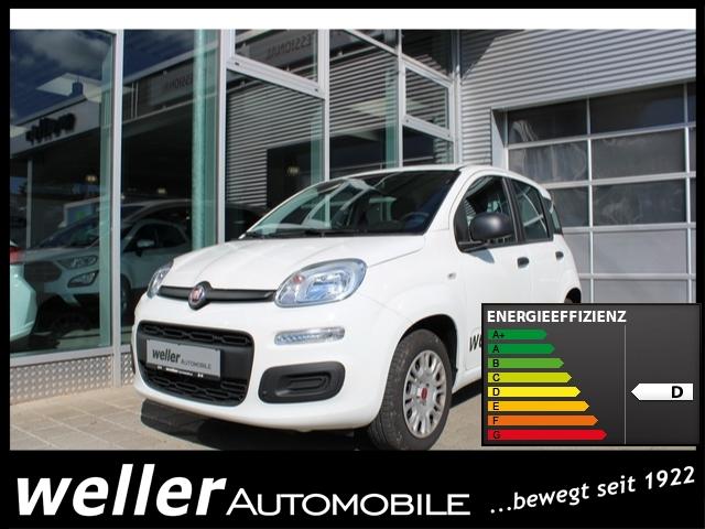 Fiat Panda EASY 1.2l 69PS Parksensoren Klimaanlage Radio-CD, Jahr 2019, petrol