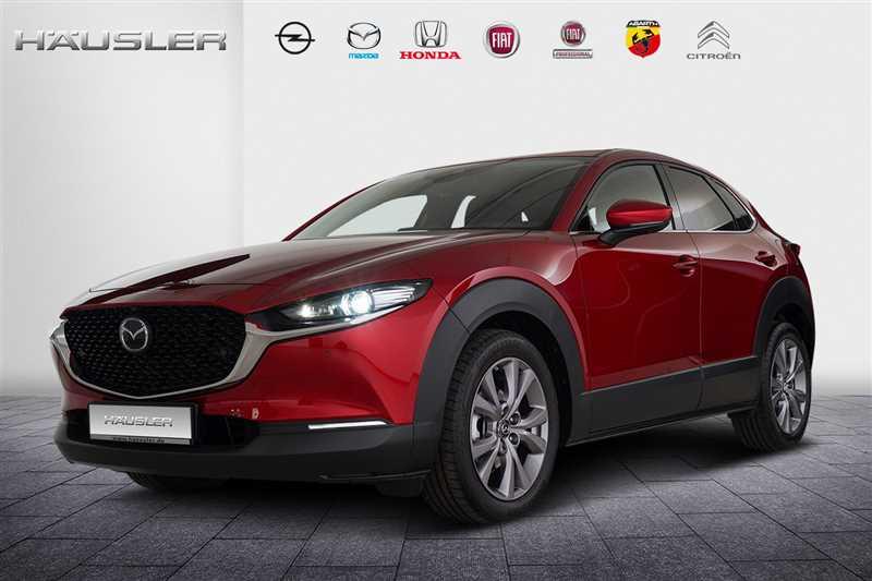 Mazda CX-30, Jahr 2019, Benzin