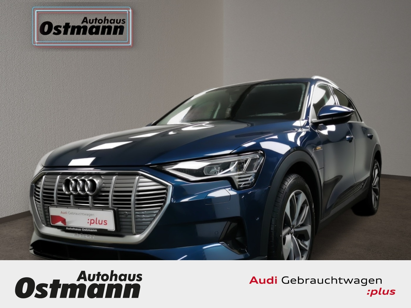 Audi e-tron 50 quattro basis Klima*Matrix*RFK, Jahr 2020, Elektro