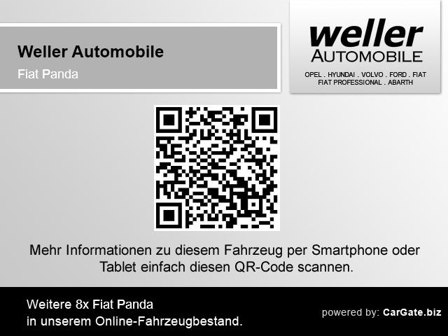 Fiat Panda 1.2 ''MY Panda'' Klima CD-Mp3 Zentralverriegelung, Jahr 2013, Benzin